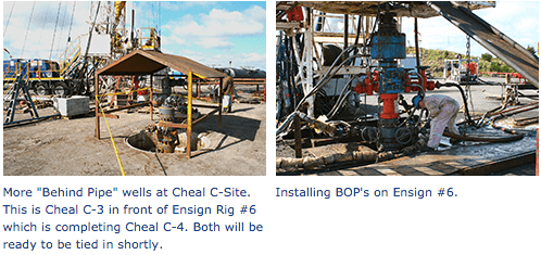 Cheal Oil Gas Production Facility 5