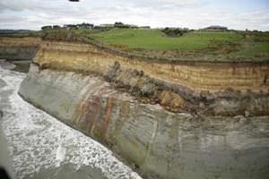 Taranaki shale