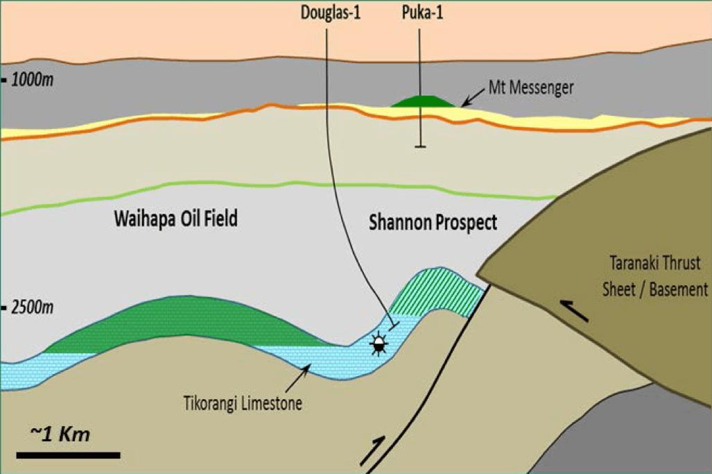 Puka oil field cross section